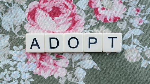 The Importance of Positive Adoption Language